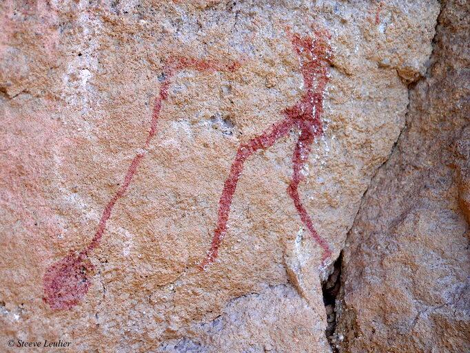 Peintures rupestres des Tassili N'Ajjer 2, Algérie 2006