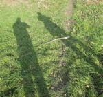 Schattenbild im Gras