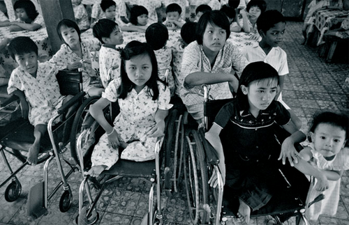 Philip Jones Griffiths, Agent Orange : Collateral Damage in Viet Nam