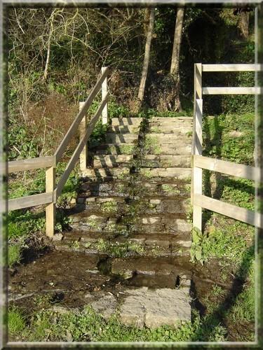 Escalier-011.jpg
