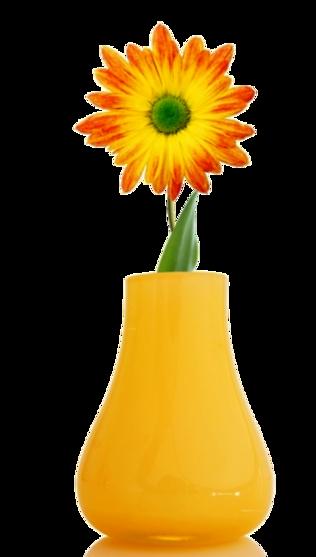 Vases de Fleurs