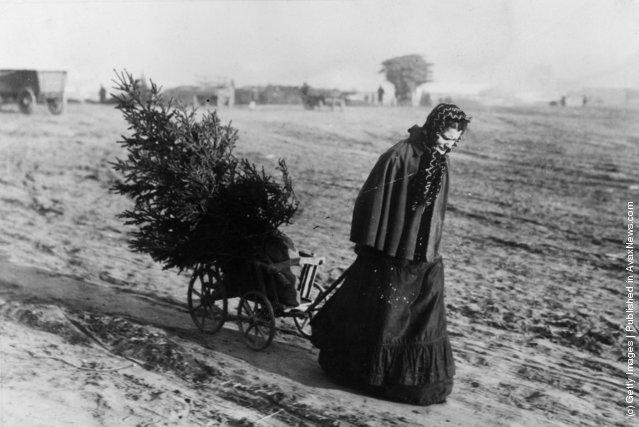 Photos Anciennes:  L'esprit des Fêtes de Noël 1895-1930