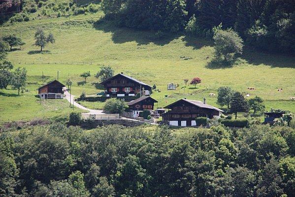 Col-du-Gd-St-Bernard-075.JPG