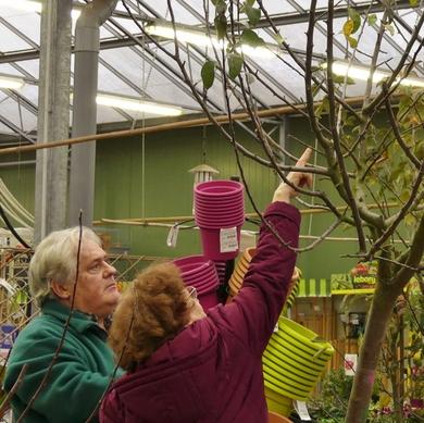 Fête des fruitiers aux pépinières Chatelain : petite leçon de taille...