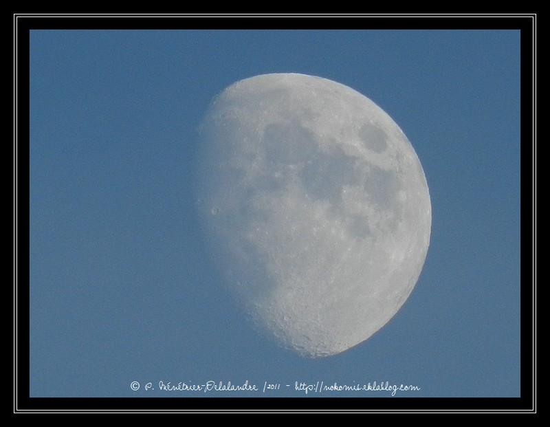 Dame la Lune, encore et toujours, au cours de la soirée...