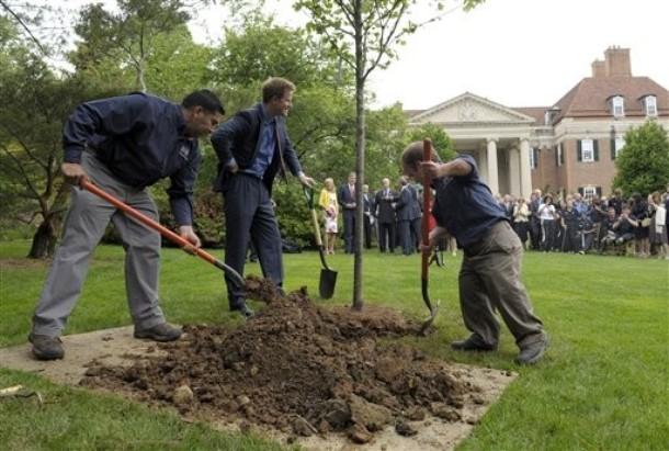 Harry plante un arbre