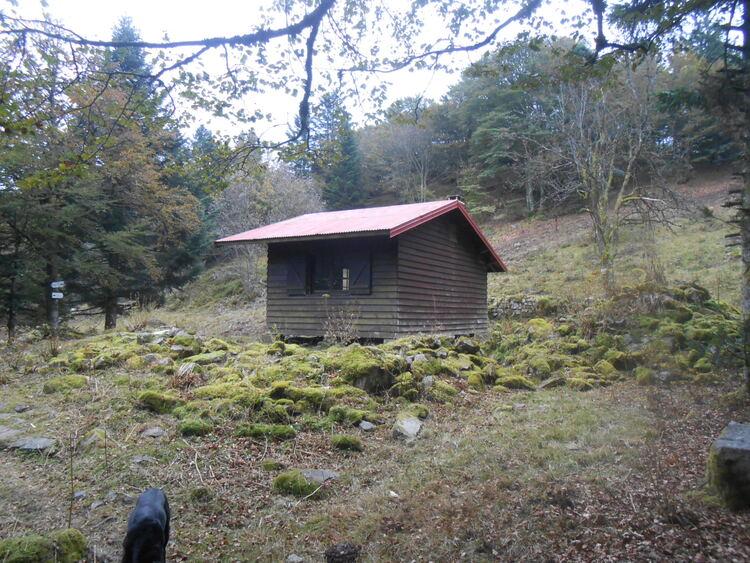 Vosges- vers la petite chaume