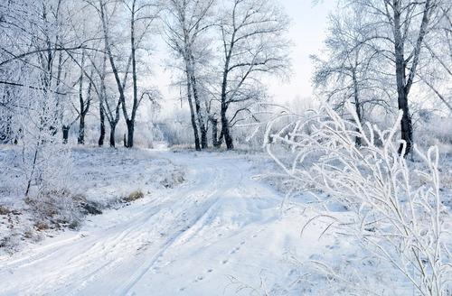 Mon retour.........  avec la féérie de la neige... !!!