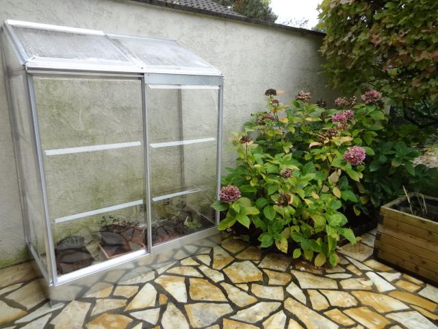 Mini-serre = grand bonheur - Le Jardin de Patou