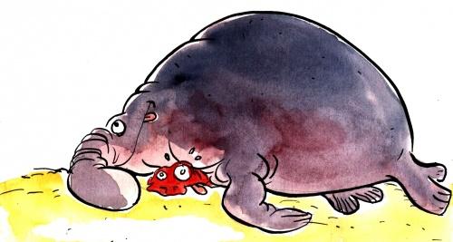 kamasoutra de l'éléphant de mer