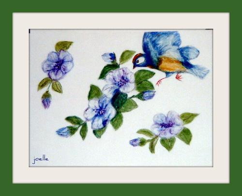 """un oiseau butine des fleurs """"sans nom""""  .."""