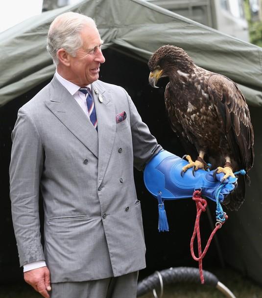 Charles et l'aigle