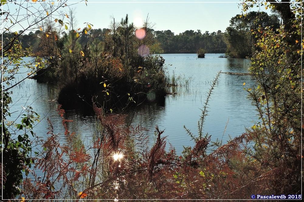 Reflets et lumières d'automne au lac du Bousquey - 2/6