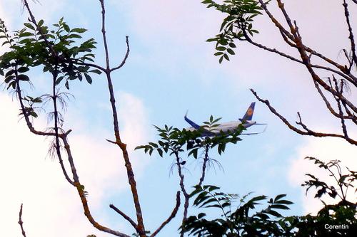 Des avions dans le ciel !