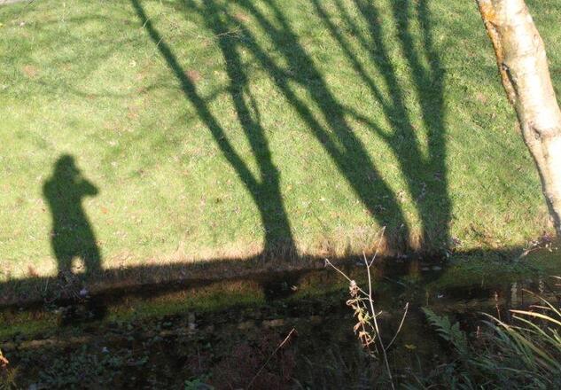 jardin à St Urbain 036