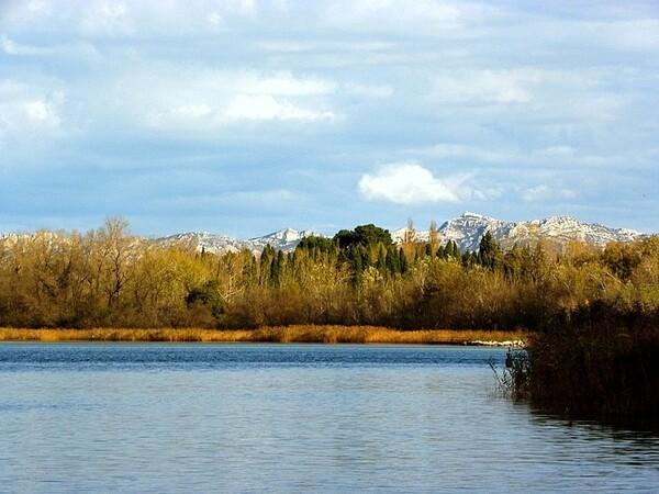 Entressen étang (9)