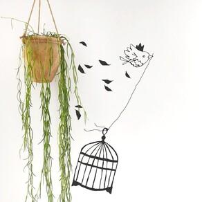 Le coucou du vendredi, haïku, senryû, thème, libre !