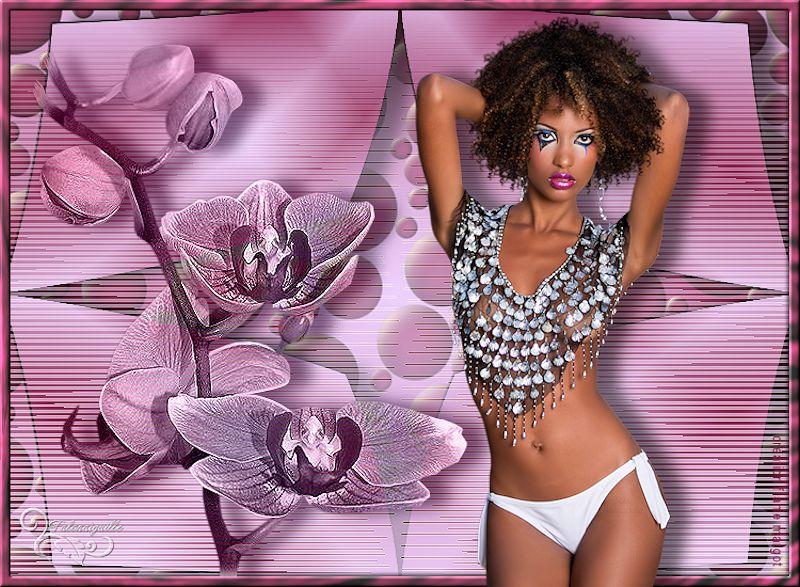 *** Fleurs exotiques  ***
