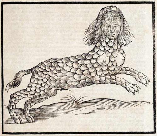 L'Histoire de quadrupèdes et de serpents - Edward Topsell