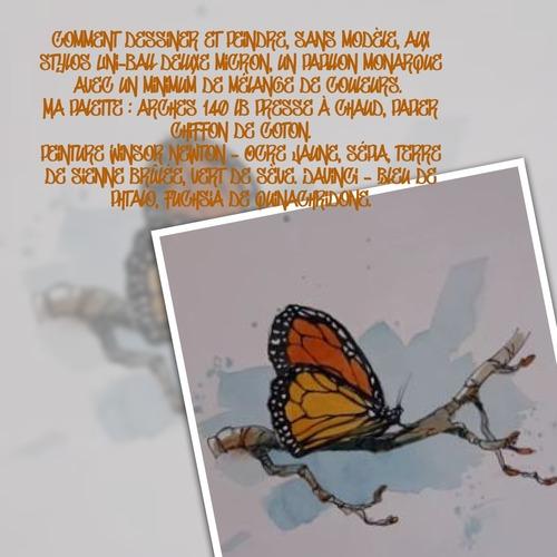 Dessin et peinture - vidéo 3632 : Comment peindre simplement et facilement un papillon monarque ? - encre indélibile et aquarelle.