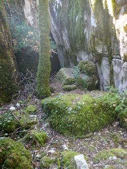 Le fond de la faille barré par un chêne vert
