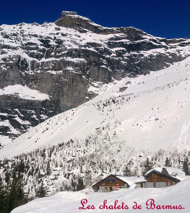 Photos-ski.....un joli sport !