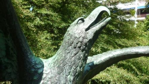 Fratin, la beauté animale (3 septembre 2011)