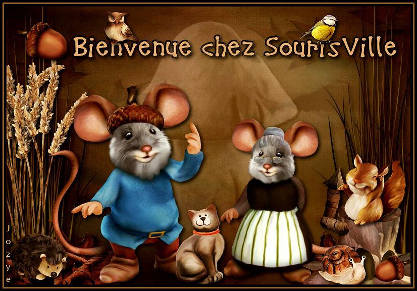 Bienvenue chez SourisVille - Page 4 200118082740803454