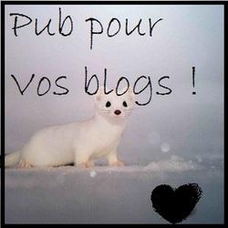 Pub pour vos blogs !