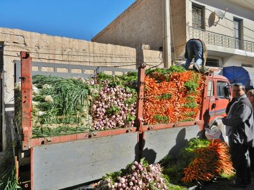 Un petit tour en Tunisie