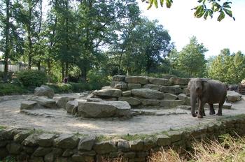 dierenpark emmen d50 120