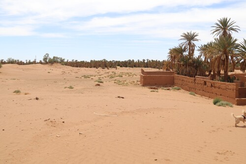 2 avril - Zagora - Ouled Driss