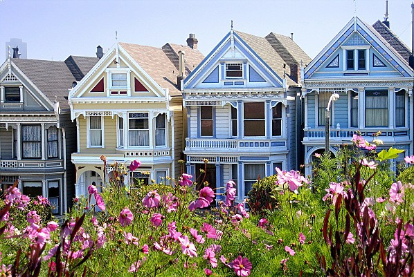 San Francisco Painted Ladies 2