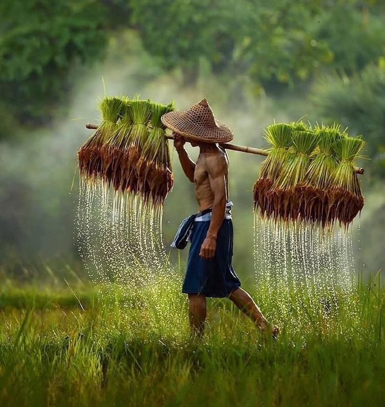 Images du monde : Superbes photos
