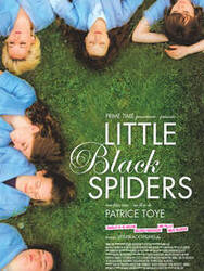 Affiche Little Black Spiders