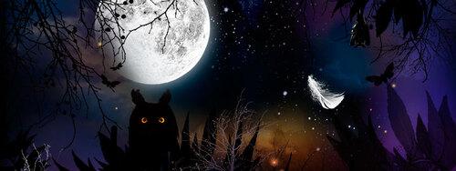 exposition: la nuit