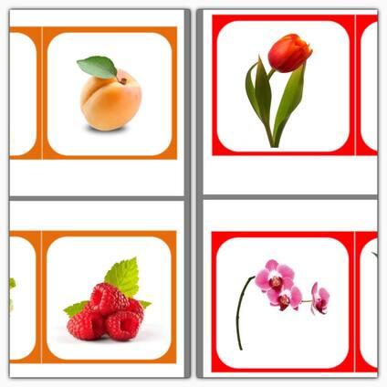 Images classifiées : Fruits, légumes, fleurs