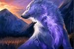 Dessin de loup absolument magnifique !!