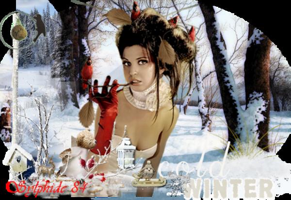 ✿ Femme des neiges ✿