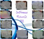 PictureIt 188 - Sniffmouse