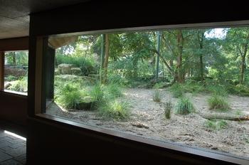 dierenpark emmen d50 060