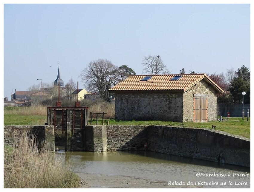Balade de l'Estuaire de la Loire - 2016