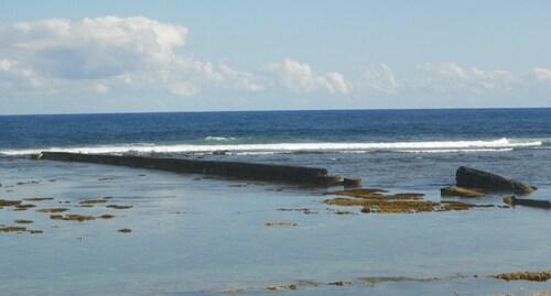 Quand la marée est très basse, les coraux  apparaissent !!! Epoustouflant