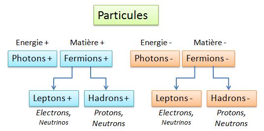 Particules principales 2 familles