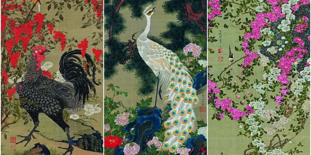 Précieusement conservées dans les réserves impériale du Japon, c'est la première fois que les oeuvres de Jakuchu sont présentées en Europe.