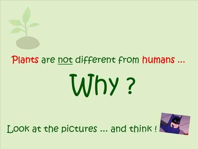 CE2SC - Humans & Plants ... are the same ! ☺