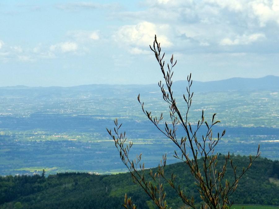 Monts de la Madeleine  2, toujours en pause!