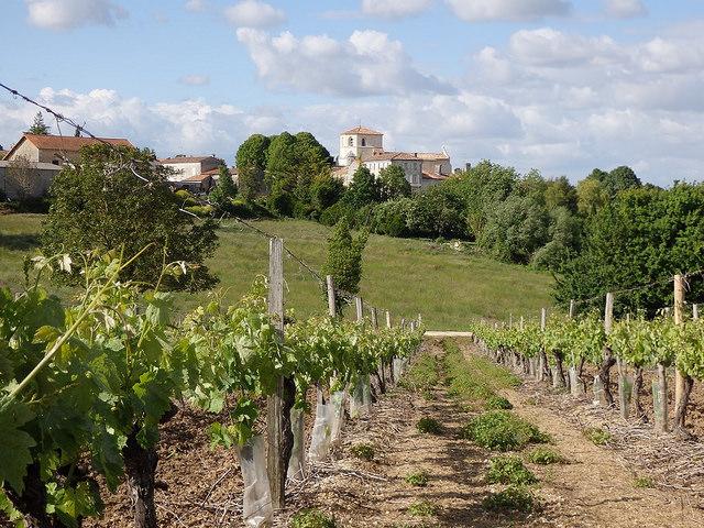 Saint Saturnin en Charente