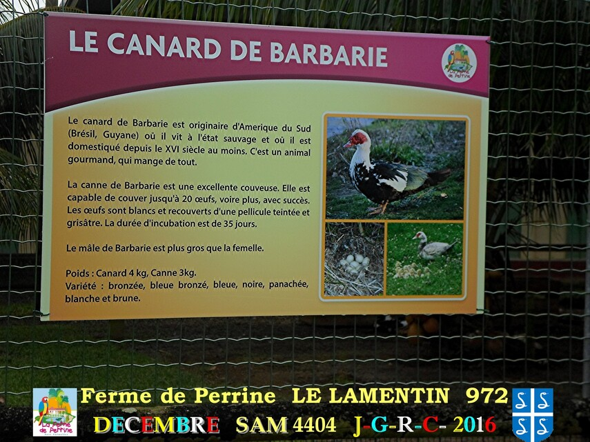PARC DE MARTINIQUE: la ferme Pérrine  3/4       D    17/08/2017