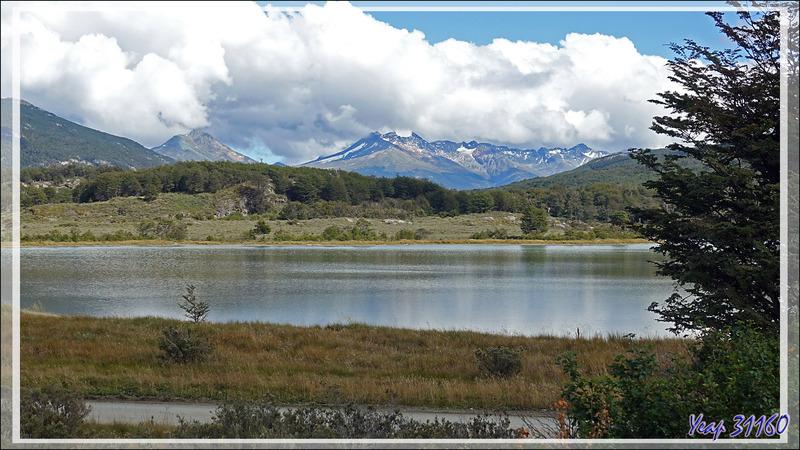 Panorama sur le paisible et très beau Lac Acigami avec le Cerro Guanaco - Lapataia - Terre de Feu - Argentine
